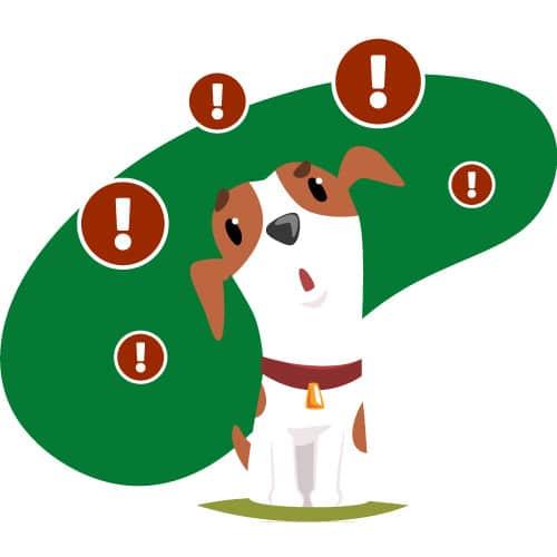 Giftköderradar Hunde App Dogorama