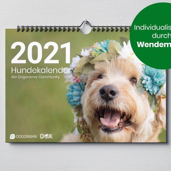 Deckblatt des Dogorama Kalenders