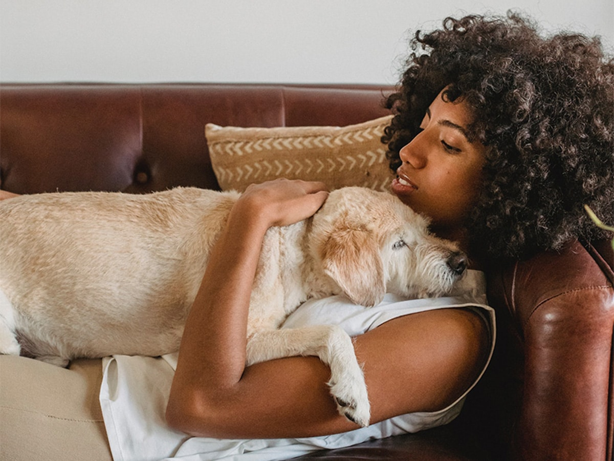 Hund kuschelt mit Frau
