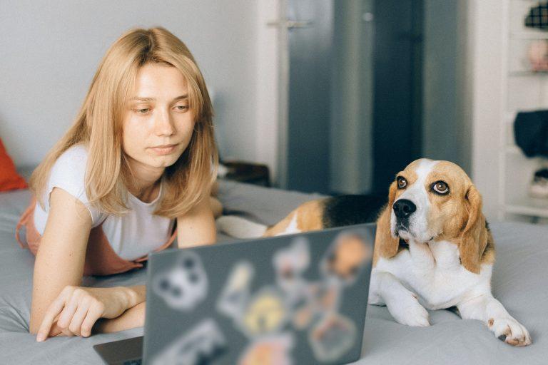 Frau mit Beagle und PC