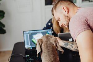 Mann mit Hund am PC